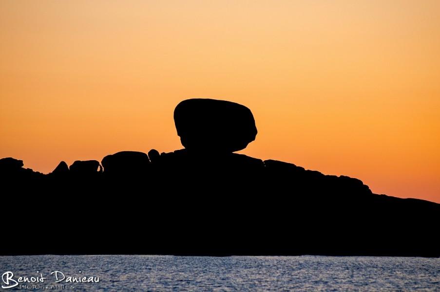Trégastel, île Renote