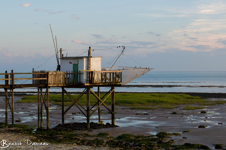 Charente maritime benoit danieau photographies - Port de meschers ...